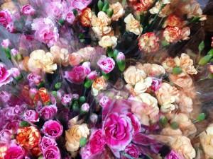 __ 顕花の花(90)